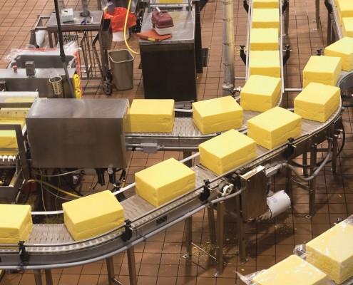Royal_4_food_processing_factory_conveyer