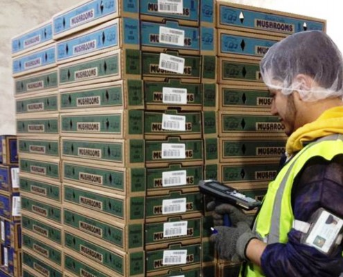 Cold Storage Warehouse Management Software   Royal 4 Systems