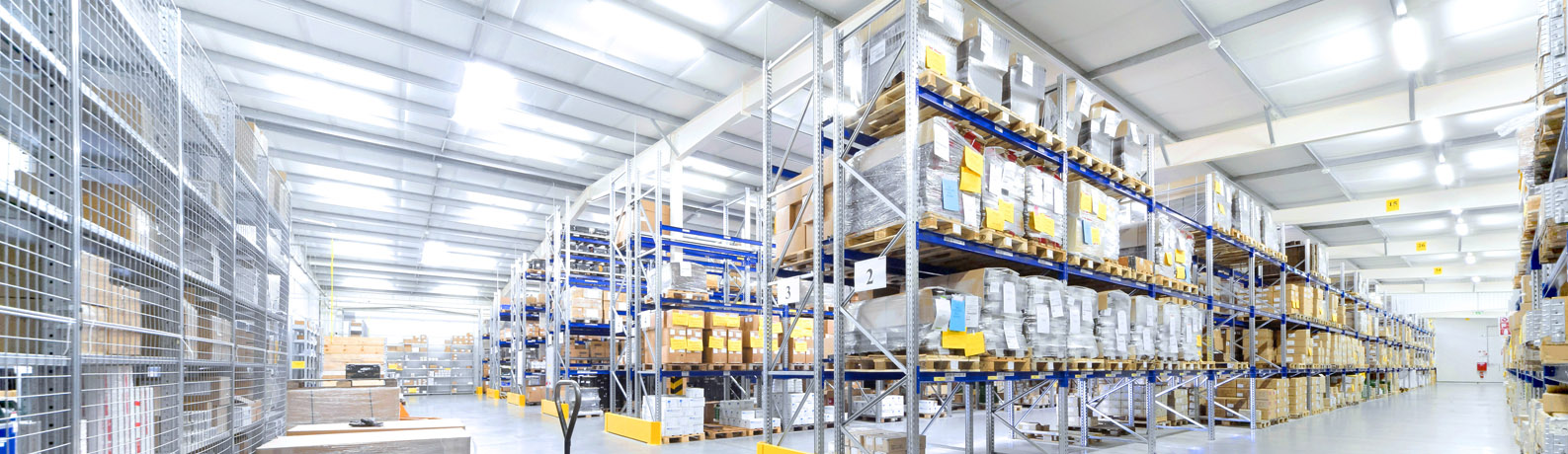 How Wise WMS Can Improve Inventory Management