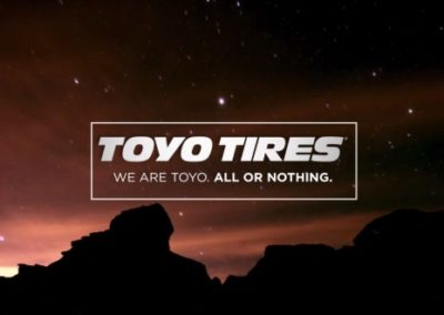 Toyo Tires Chooses WISE WMS Software – For Their Clients
